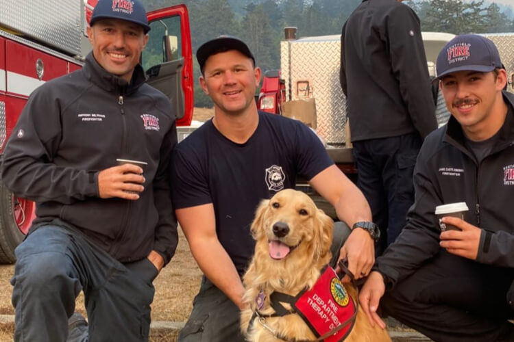 Dogs Helping During Wildfires